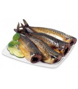Makrela wędzona kg.