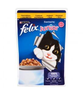 Felix Fantastic Junior z kurczakiem w galaretce Karma dla kociąt 100 g