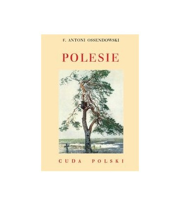 Polesie Książka 7,99
