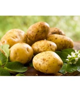Ziemniaki sałatkowe 2kg