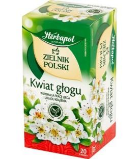 Herbapol Kwiat Głogu 20szt.