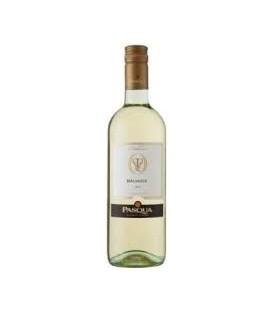 Pasqua Le coll Malvasia białe wino 1,5L